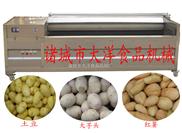 地瓜去皮机|红薯清洗脱皮机|毛辊清洗机