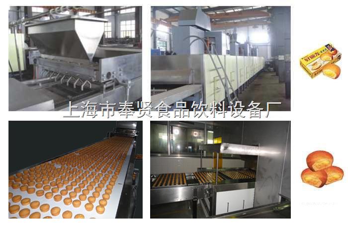 12噸,10噸全自動磨堡蛋糕生產線