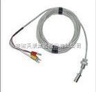 WZPM-001D端面热电阻