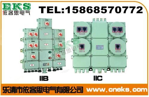 订做明装防爆动力配电箱BXD51-T6K