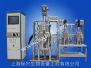 10L-10L-100L多级发酵罐
