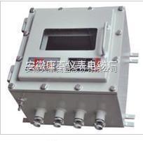 DIPA20 TA防爆仪表保温箱