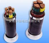 VV VV22 VLV VLV22动力电缆