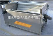 GB-1000去皮机-根茎叶类蔬菜清洗机,多功能果蔬清洗机,柿子清洗机