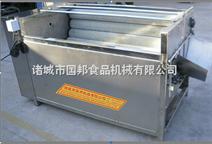 不锈钢小型蔬菜清洗机设备