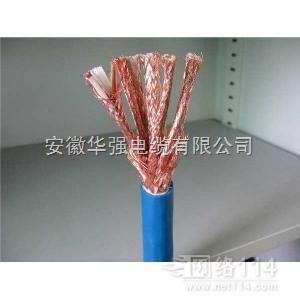 IA-DJYPVP计算机电缆