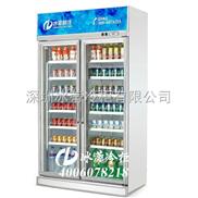 冰柜价格/便利店冰柜/双门冰柜