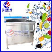 不锈钢小型气泡臭氧杀毒洗果机