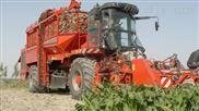 土豆收获机,土豆联合收获机价格