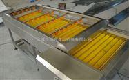 全自动连续式玉米清洗机