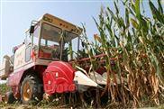 山东金亿春雨4YZ-3B型自走式玉米联合收割机