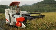福田雷沃-雷沃谷神RG30(4LZ-3G) 履带式水稻收割机