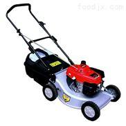 美神割草机MTD12A、美神草坪修剪机、手推式割草机