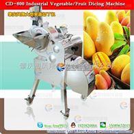 CD-800包心菜切块椰菜切丁机器