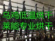莱能乌鸡烘干机 低温冷风干燥设备 自动化操作 节能环保 质保一年上门服务