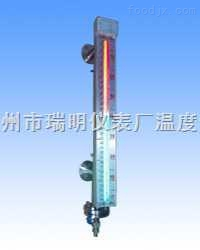 磁敏电子双色液位计原理,磁敏电子双色液位计价格,磁敏电子双色液位计选型,磁敏电子双色液位计工厂