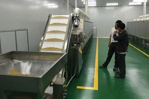 大黄豆烘烤设备,大豆隧道烘烤炉,新型大豆烘烤炉