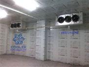 蔬菜水果保鲜冷库安装制冷设备全年组装维护