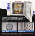 恒溫定時五谷雜糧烘焙機/化工粉末顆粒烘干機
