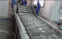 新疆喀什红枣清洗流水线