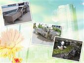 QXJ-5000*小型大姜清洗流水线