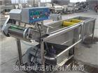 厂家专业生产多功能果蔬清洗设备 不锈钢大型清洗机