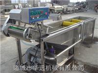 廠家專業生產多功能果蔬清洗設備 不鏽鋼大型清洗機