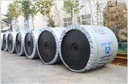 PVC发泡地毯背胶固化铁氟龙输送带 门垫塑料地毯背胶固化输送带