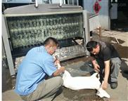 厂家直供羊屠宰设备绵羊山羊脱毛机
