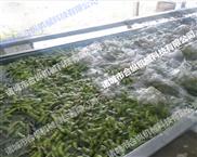 多功能蔬菜清洗机合纵专业生产