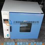 优质鼓风干燥箱DHG-9030批发首选/DHG-9030电热干燥箱现货出售/鼓风烘箱