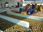 菠萝汁生产线