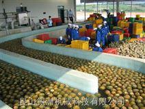 菠萝浓缩汁生产线