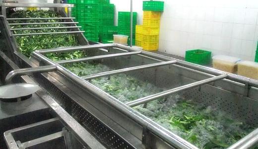 蔬菜气泡清洗机市场优势分析
