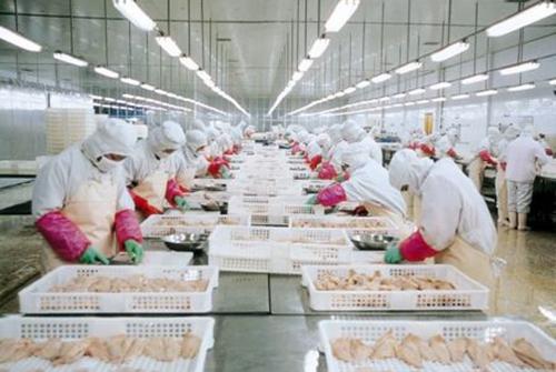 大连:制造工业设备投建促海洋食品深加工创收