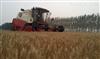 奇瑞重工谷王4LZ-3.0型小麦收割机